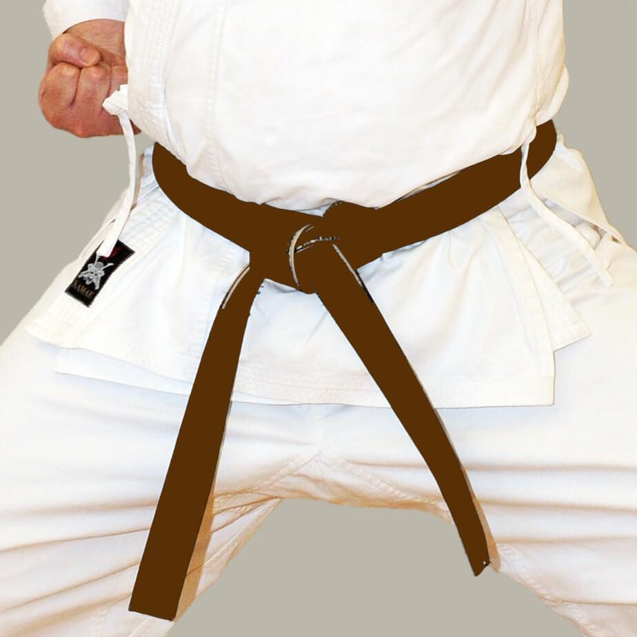 Brown Belt Karate
