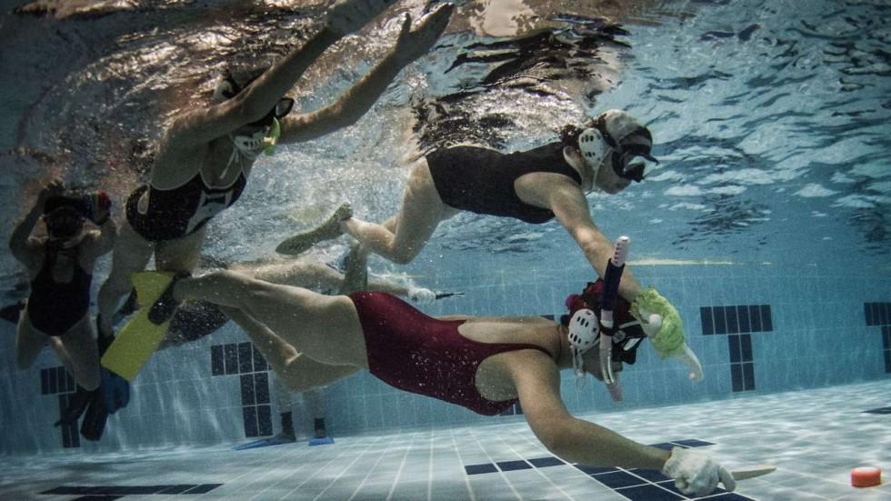 Elements of Underwater Hockey