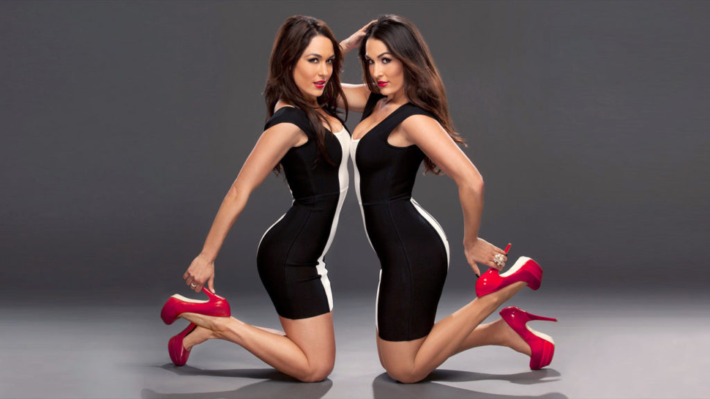 The-Bella-Twins