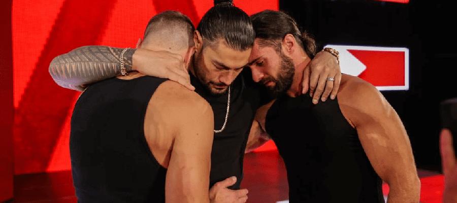 WWE Fights