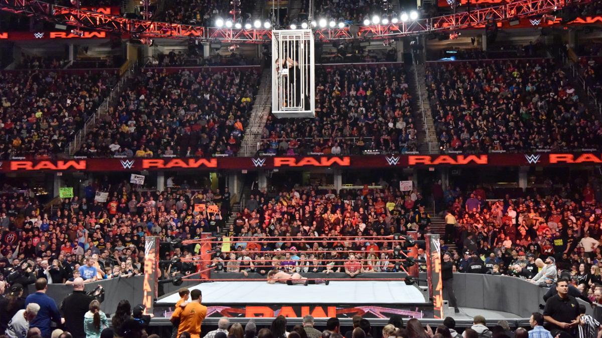 Increasing Commercialization in WWE