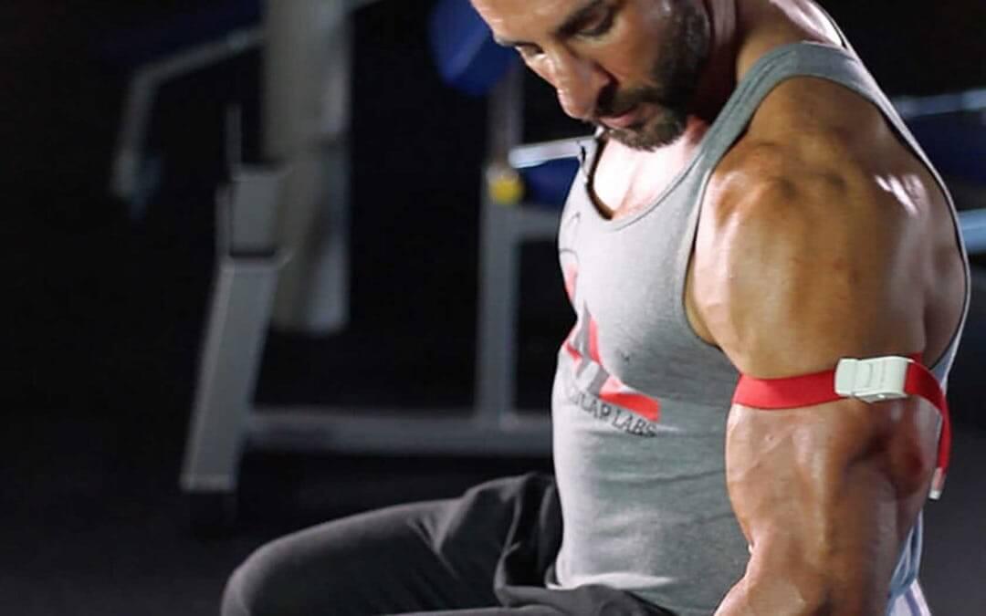 wwe Muscle Gain