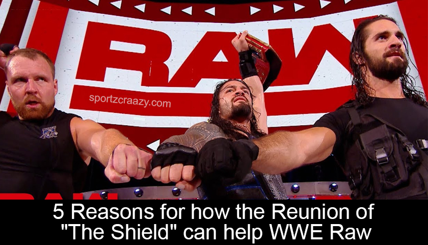 Reunion of The Shield