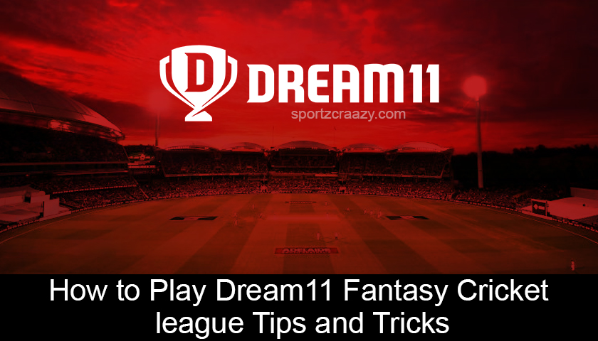 How to Play Dream11 Fantasy Cricket league | Tips and Tricks