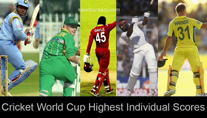 Cricket World Cup Highest Individual Scores