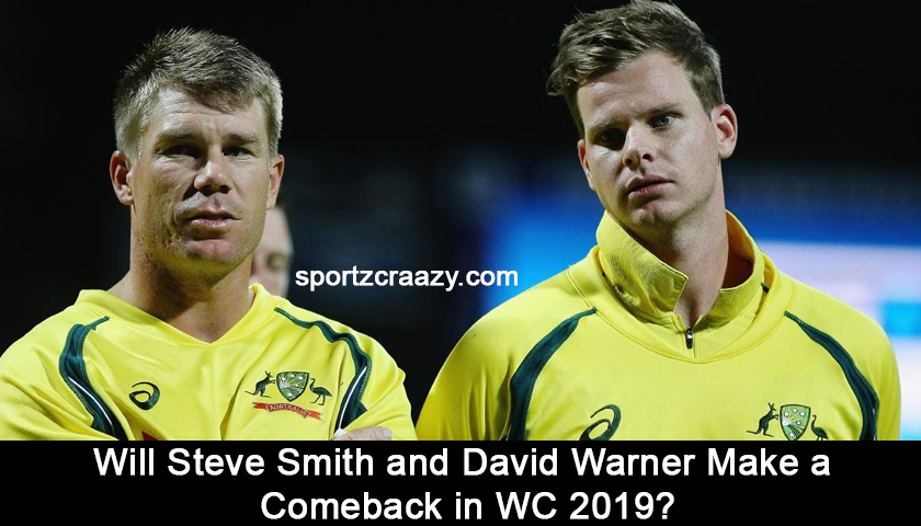 Comeback of Steve Smith and David Warner in WC 2019