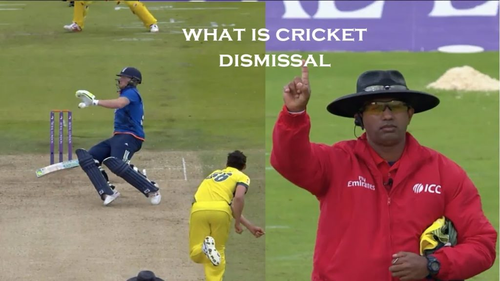 Types of Dismissal in cricket