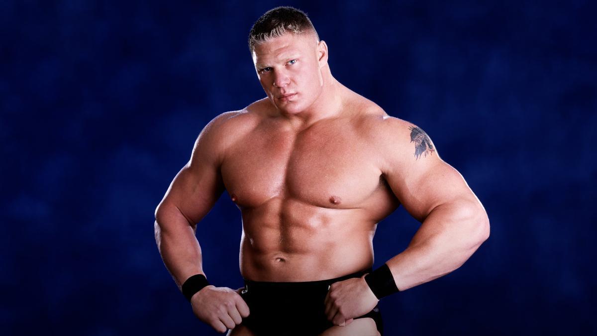 Brock Lesnar Professional Life