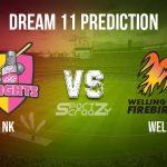 NK vs WEL Dream11 Prediction, Live Score & Northern Knights vs Wellington Firebirds, Cricket Match Dream11 Team: Dream11 Super Smash-Men's