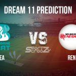 HEA vs REN Dream11 Prediction, Live Score & Brisbane Heat vs Melbourne Renegades Cricket Match Dream Team: Big Bash League 2019-20, Match- 44