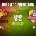 WEL vs NK Dream11 Prediction, Live Score & Wellington vs Northern Knights, Cricket Match Dream Team: Super Smash 2019-20, Match- 20